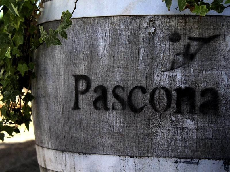 Celler Pascona - Vins de Terroir - DO Montsant