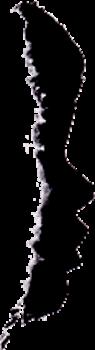 lo petito de pascona - celler pascona - DO Montsant